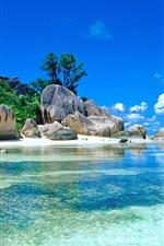 Tropics, sea, rocks, beach, palm trees, sky, clouds