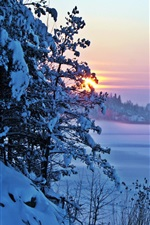 Preview iPhone wallpaper Winter morning, snow, sunrise, trees
