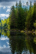 Preview iPhone wallpaper Canada, British Columbia, lake, trees, spring, reflection