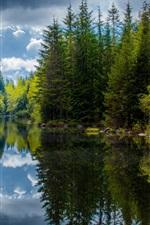 미리보기 iPhone 배경 화면 캐나다, 브리티시 컬럼비아, 호수, 나무, 봄, 반사