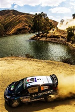 Preview iPhone wallpaper Ford Fiesta WRC Rally, car, dust