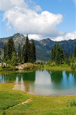 Preview iPhone wallpaper Mountain, lake, grass, trees