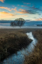 Preview iPhone wallpaper Nature, trees, field, fog, stream, dawn