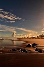 Sunset, coast, beach, palm trees, Bahia, Brazil