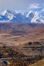 Preview iPhone wallpaper The Altai mountains, autumn, trees, snow