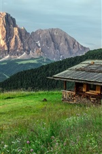 Wood house, mountain, trees, grass