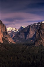 Preview iPhone wallpaper Yosemite National Park, California, USA, mountains, forest, trees, dusk