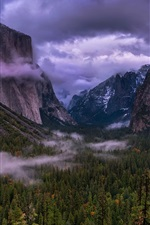 Yosemite National Park, USA, trees, mountains, clouds, haze, dusk