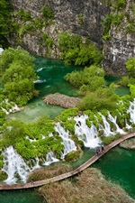 Beautiful landscape, green Paradise, tropical, river, waterfalls, bridge, cliff