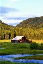 미리보기 iPhone 배경 화면 숲, 계곡, 별장, 강, 나무, 잔디,