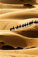 Preview iPhone wallpaper Hot desert, sand dunes, the caravan