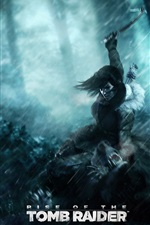 Preview iPhone wallpaper Lara Croft, Rise of the Tomb Raider