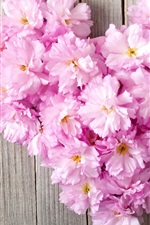 Preview iPhone wallpaper Pink flowers, love heart, wood board