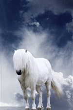 Preview iPhone wallpaper White horse, mane, clouds