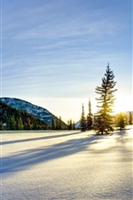 Preview iPhone wallpaper Winter, snow, mountains, sunrise, trees
