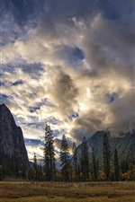 Preview iPhone wallpaper Yosemite National Park, Sierra Nevada, USA, mountains, trees, clouds