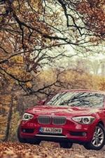 iPhone fondos de pantalla BMW 118D F20 coche rojo