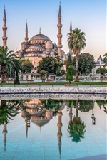 Preview iPhone wallpaper Blue Mosque, Sultan Ahmed Mosque, Istanbul, Turkey, pool, palm trees