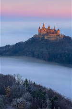Preview iPhone wallpaper Germany, Castle Hohenzollern, autumn, fog, trees