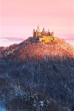 Preview iPhone wallpaper Germany, Castle Hohenzollern, morning, mountains, trees, winter, sun