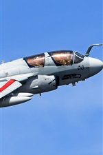 Preview iPhone wallpaper Grumman EA-6B Prowler, airplane, sky