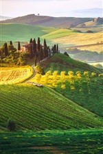 Preview iPhone wallpaper Italy, Tuscany, fog, sky, fields, house, manor
