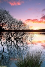 Preview iPhone wallpaper Lake, trees, silhouette, water reflection, sunset, evening