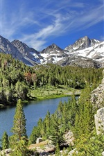 Preview iPhone wallpaper Little Lakes Valley, California, USA, lake, mountain, trees