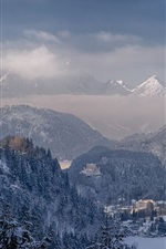 Preview iPhone wallpaper Neuschwanstein Castle, Bavaria, Germany, mountains, winter, snow, trees