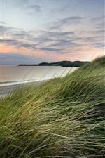Preview iPhone wallpaper Sea, sunset, grass, wind