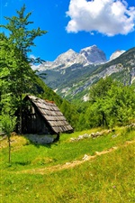Slovenia, house, trees, grass, sky, clouds, mountains