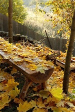 Preview iPhone wallpaper Autumn, yellow leaves, bench, fence