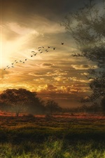 Preview iPhone wallpaper Beautiful sunset scenery, trees, grass, sky, birds, clouds
