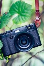 Camera, green, leaves