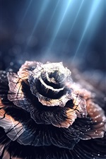 Preview iPhone wallpaper Creative design, flower, petals