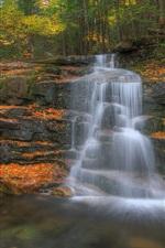 iPhone обои Лес, деревья, осень, скалы, водопад, ручей