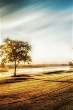 Preview iPhone wallpaper Morning light, trees, grass, fence, river, fog