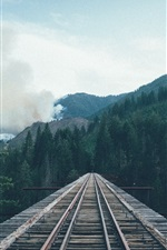 Preview iPhone wallpaper Railway, road, bridge, wood, trees, mountains