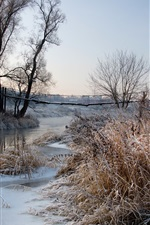 Preview iPhone wallpaper Winter, frost, dawn, river, trees