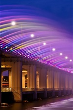 Preview iPhone wallpaper Asia, Korea, Seoul, Banpo Bridge, rainbow fountain, night lights
