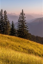 Preview iPhone wallpaper Bavaria, Germany, Alps mountain, road, grass, trees