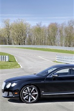 Preview iPhone wallpaper Bentley Continental GT Le Mans Edition car side view