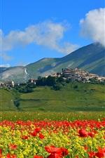iPhone fondos de pantalla Castelluccio, Italia, montañas, flores de las amapolas, pueblo