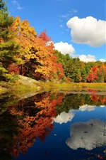Preview iPhone wallpaper Clouds, forest, lake, trees, autumn