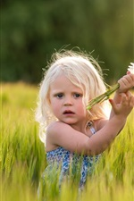 Preview iPhone wallpaper Cute girl in wheat field, daisies, flowers