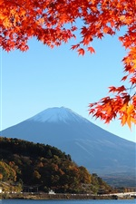 Preview iPhone wallpaper Japan, mount Fuji, autumn, red leaves