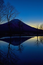 Preview iPhone wallpaper Japan, mount Fuji, night, lake, trees