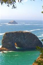 Preview iPhone wallpaper Pacific coast, sea waves, rocks, trees, Oregon, USA