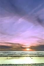 Preview iPhone wallpaper Sunset, sea, sky, beach, birds