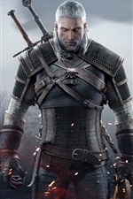 Preview iPhone wallpaper The Witcher 3: Wild Hunt, white hair man